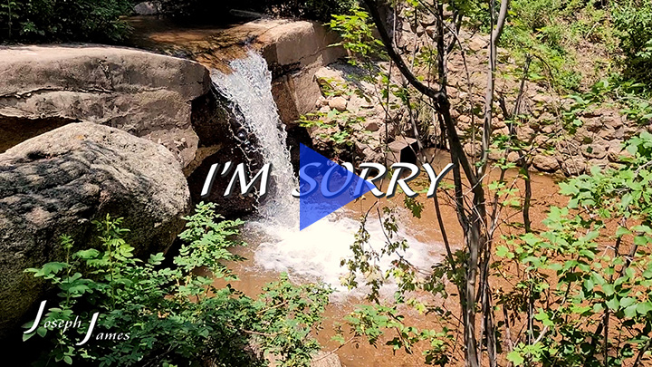 I'M SORRY | Joseph Jamesa